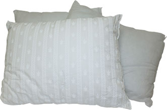 Pillows offered by capital bedding company